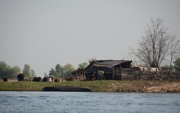 barque posée devant la ferme de Mila 23