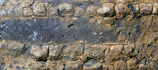 Mission d'étude des céramiques de l'habitat Néolithique ancien « Cris » de Negrilesti, au musée d'Histoire et d'Archéologie de Galati